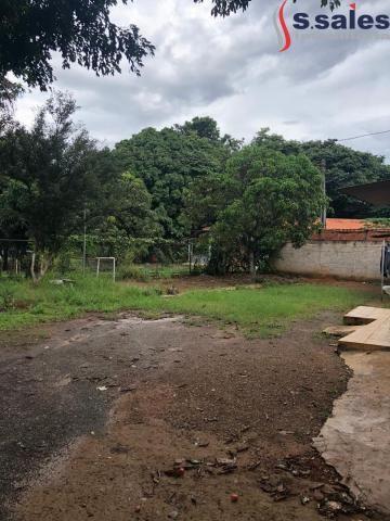 Oportunidade - Terreno Residencial/Comercial - Vicente Pires - Foto 4