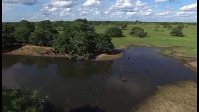Fazenda em Corumbá - MS. 19.397 hectares - Foto 8