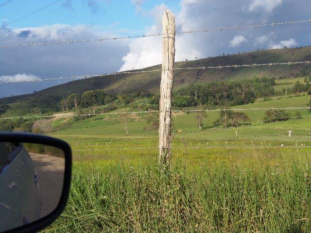 Fazenda com 700 Hectares em Barra de Guabiraba (Cód.: f20568) - Foto 11