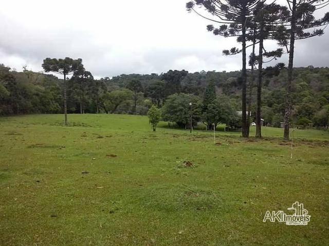 Sítio à venda, 169400 m² por r$ 472.500 - rural de cantagalo - cantagalo/pr