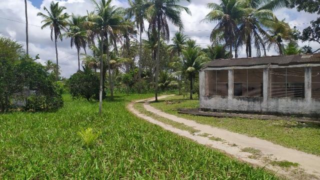 Vende-se excelente sitio em Igarassu, bem localizado - Foto 19