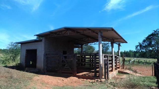 Fazenda 31 hectares em Curvelo/MG. - Foto 15