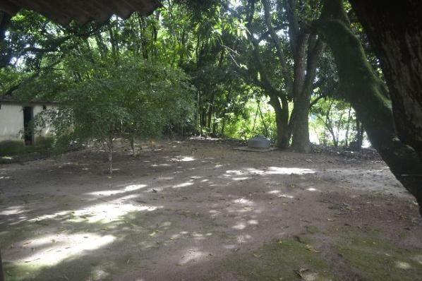Chácara de 9.237 m² - Vila Morais - Próximo do Jd. Novo Mundo - Foto 3