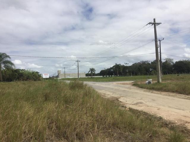 Terreno à venda em Porto grande, Araquari cod:V02928