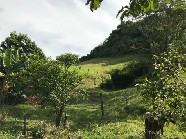 Área Rural - Foto 13