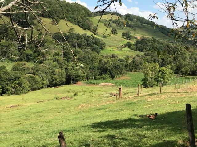 Área Rural - Foto 14