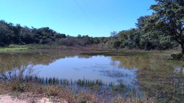 Fazenda 31 hectares em Curvelo/MG. - Foto 18