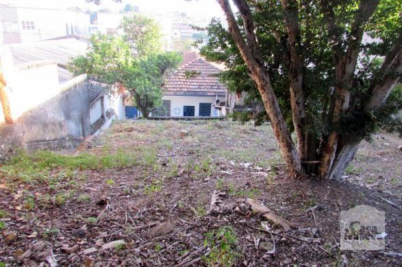 Casa à venda com 3 dormitórios em Lagoinha, Belo horizonte cod:211834 - Foto 7