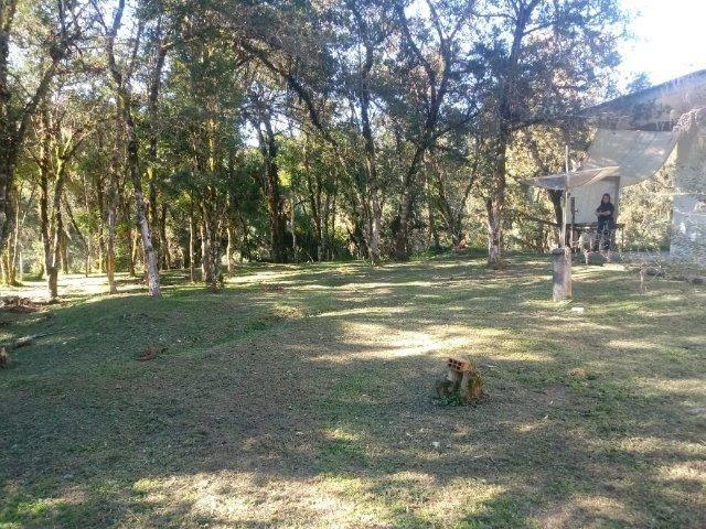 Belissima Chácara em Agudos do Sul/PR 11.500M² - Foto 13