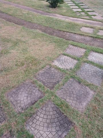 Sítio 8 hectares fim de linha em Paraju Domingos Martins - Foto 14