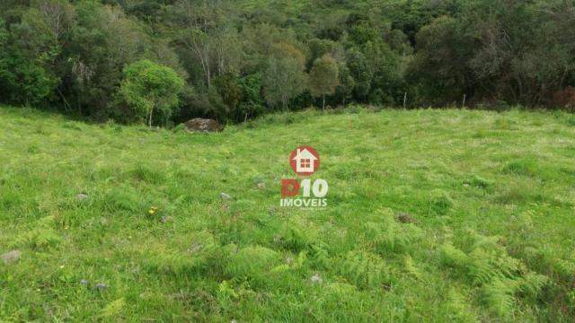 Chácara a venda, próximo ao monumento dos bertussi - r$ 85.000,00 - Foto 7