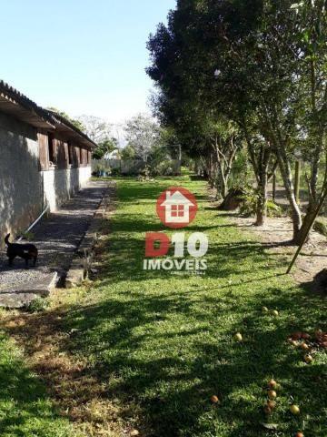 Chácara com 4 dormitórios à venda, 36000 m² por R$ 500.000 - Vila Santa Catarina - São Joã - Foto 13
