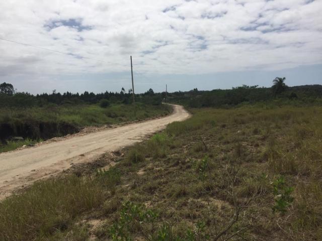 Terreno à venda em Porto grande, Araquari cod:V02928 - Foto 5