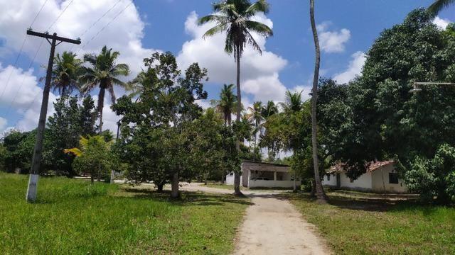 Vende-se excelente sitio em Igarassu, bem localizado - Foto 3