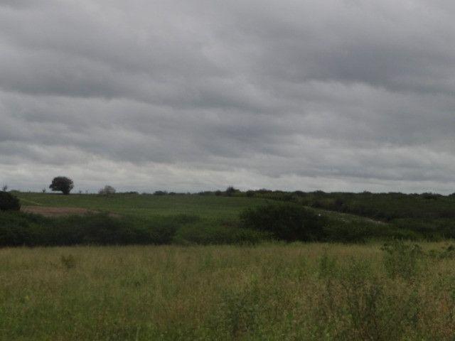 Fazenda sao paulo do potengi - Foto 14