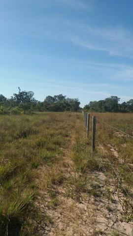 Fazenda c/ 4.985he, c/ capac. p/ 2.000 novilhas, Araguaiana-MT, preço bom - Foto 9