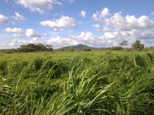 Fazenda em Corumbá - MS. 20.070 hectares - Foto 10