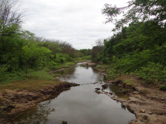 Fazenda sao paulo do potengi - Foto 16