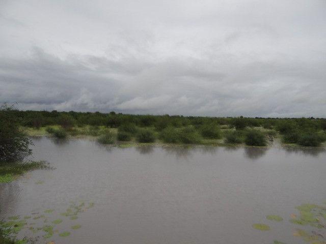 Fazenda sao paulo do potengi - Foto 7