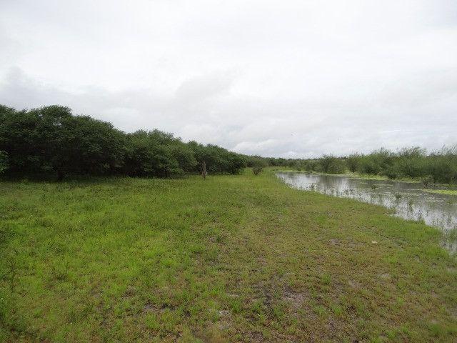 Fazenda sao paulo do potengi - Foto 9