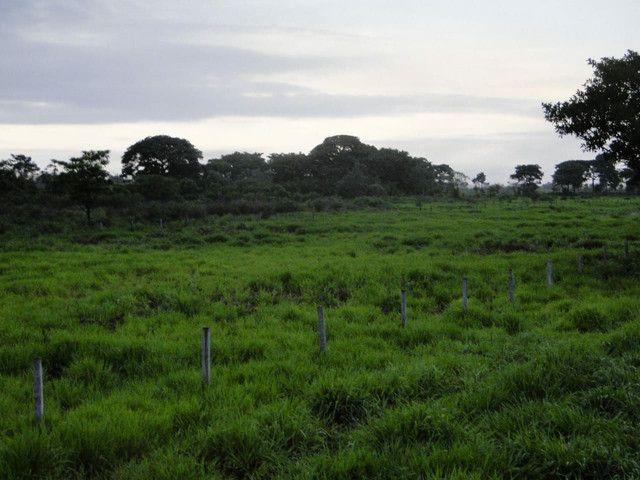 Fazenda em Corumbá - MS. 20.070 hectares - Foto 4