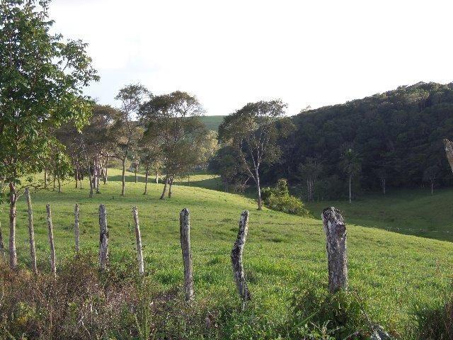 Fazenda com 700 Hectares em Barra de Guabiraba (Cód.: f20568) - Foto 18