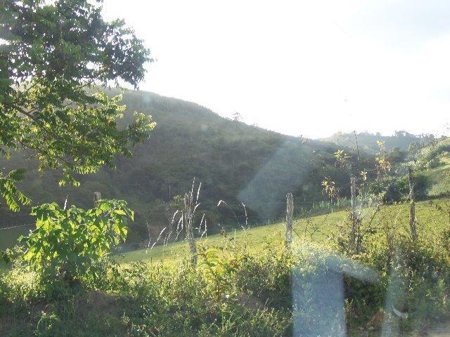 Fazenda com 700 Hectares em Barra de Guabiraba (Cód.: f20568) - Foto 2