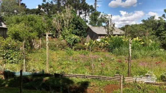 Sítio à venda, 169400 m² por r$ 472.500 - rural de cantagalo - cantagalo/pr - Foto 2