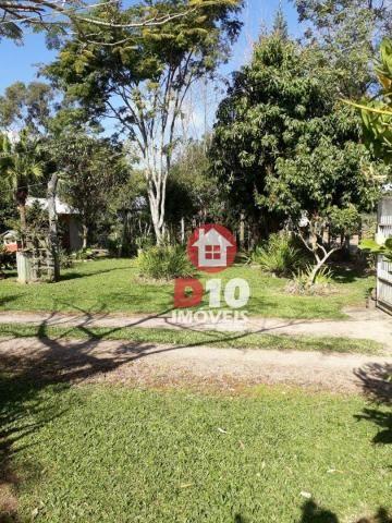 Chácara com 4 dormitórios à venda, 36000 m² por R$ 500.000 - Vila Santa Catarina - São Joã - Foto 20