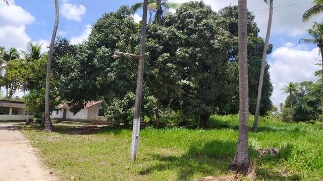 Vende-se excelente sitio em Igarassu, bem localizado - Foto 15