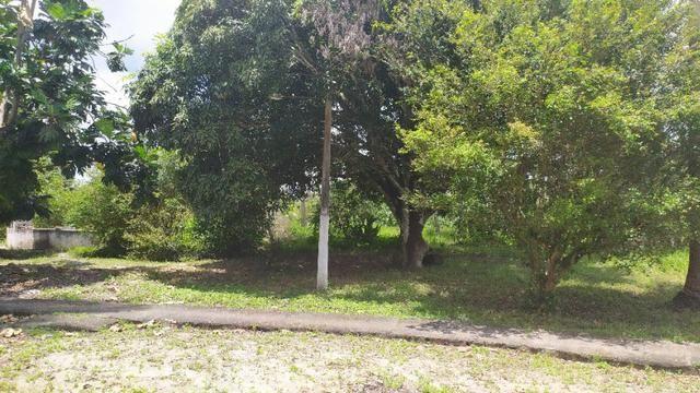 Vende-se excelente sitio em Igarassu, bem localizado - Foto 18