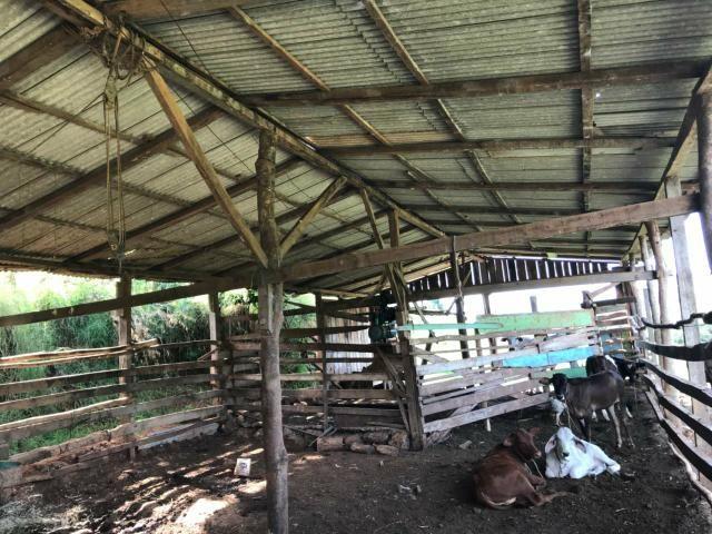 Área Rural - Foto 3