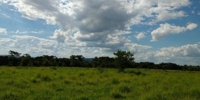 Fazenda - Sítio à venda, Centro - Corinto/MG - Foto 5