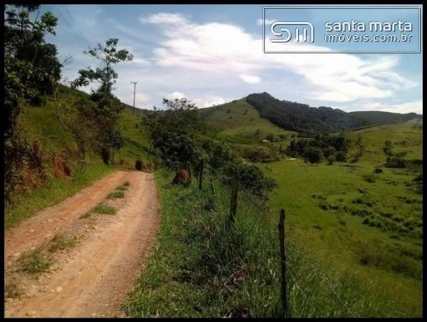 FAZENDA EXCELENTE - GADO CORTE/LEITE - GUARATINGUETÁ - SP - Foto 2
