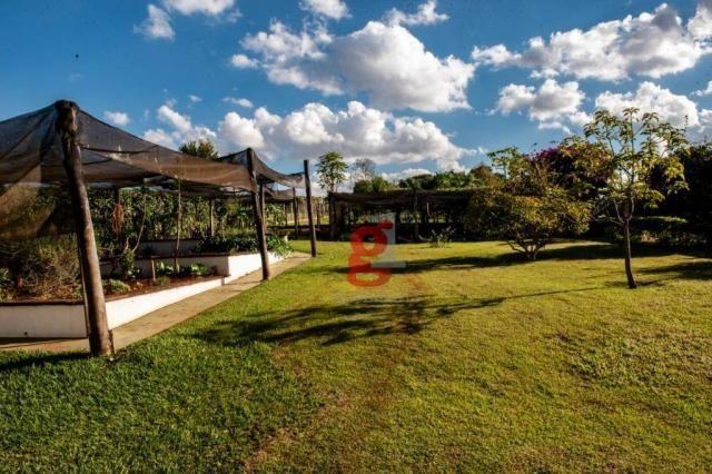Chácara à venda, 5000 m² por R$ 1.200.000,00 - Jardim Santa Adelaide - Cambé/PR - Foto 15