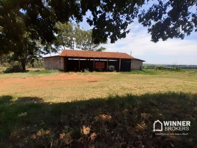 Sítio à venda, 242000 m² por R$ 3.500.000,00 - Rural - Mandaguaçu/PR - Foto 14