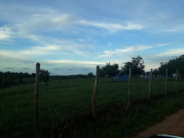 Fazenda com 50 hectares  estruturada na região de Monte Alegre   - Foto 4