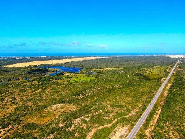 Área - Fazenda - Barra Maxaranguape - Foto 5