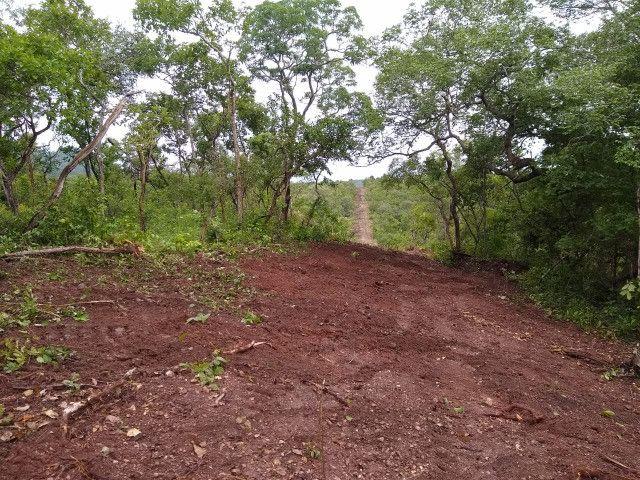 Fazenda Pitomba - 632 Hectares - Conceição do Tocantins - F210210 - Foto 16
