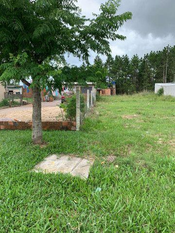 Barbada Terreno em  Pelotas somente essa semana  (sítio Floresta)escriturado  - Foto 9