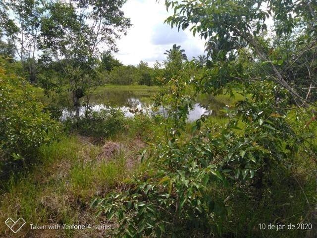Fazenda no km 42, rumo Humaitá, com 100.00ha - Foto 6