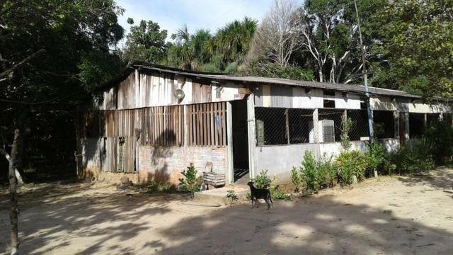 Fazenda no km 42, rumo Humaitá, com 100.00ha - Foto 4