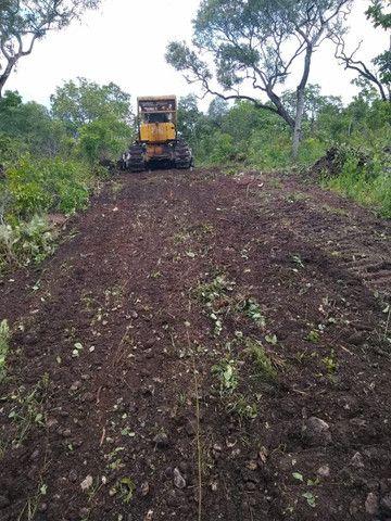 Fazenda Pitomba - 632 Hectares - Conceição do Tocantins - F210210 - Foto 17