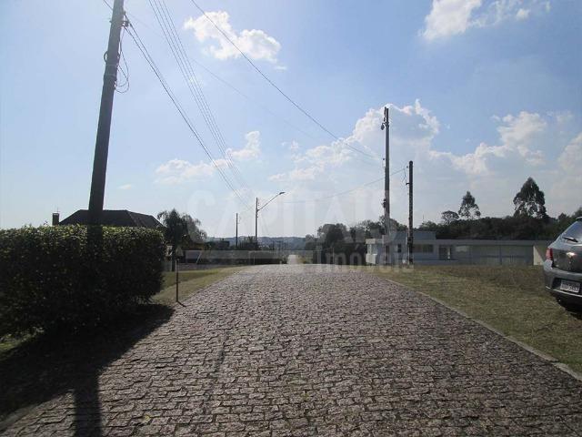 Terreno com 1250m² Campo Largo da Roseira, São José dos Pinhais - Foto 4