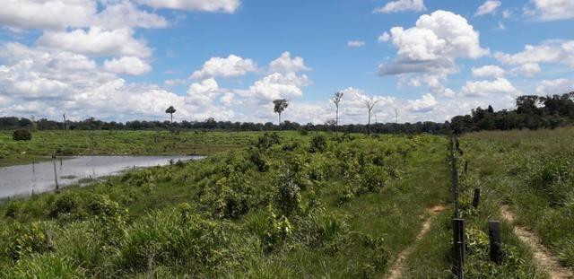 Fazenda em Roraima top