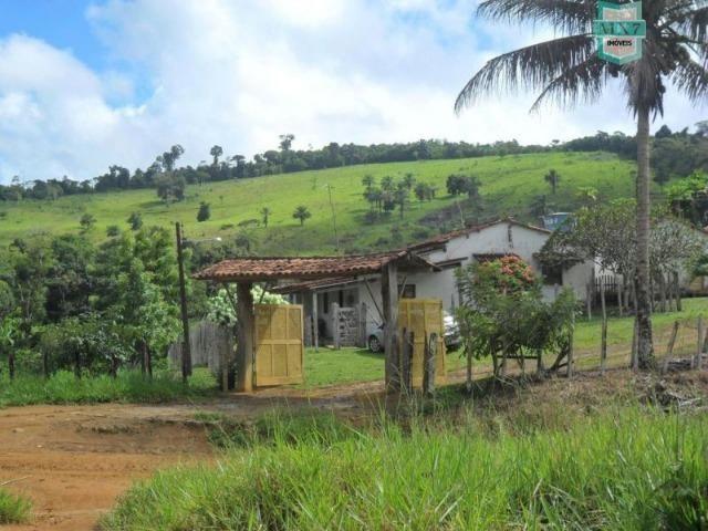 Fazenda Itamaraty com 300 Hectares, potencial para 300 gados, 70 hectares de cacau - Foto 2