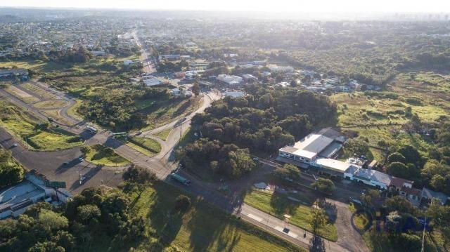 Terreno à venda, 7200 m² por R$ 3.000.000,00 - Jardim Veraneio - Foz do Iguaçu/PR - Foto 12