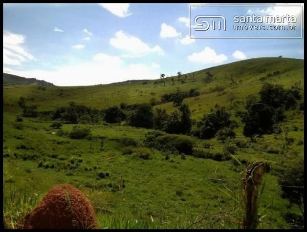 FAZENDA EXCELENTE - GADO CORTE/LEITE - GUARATINGUETÁ - SP - Foto 3