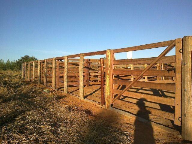 Oportunidade Entrada R$ 1.200.000,00 restante em 05 anos sem juros - planta 300 hectares - Foto 3