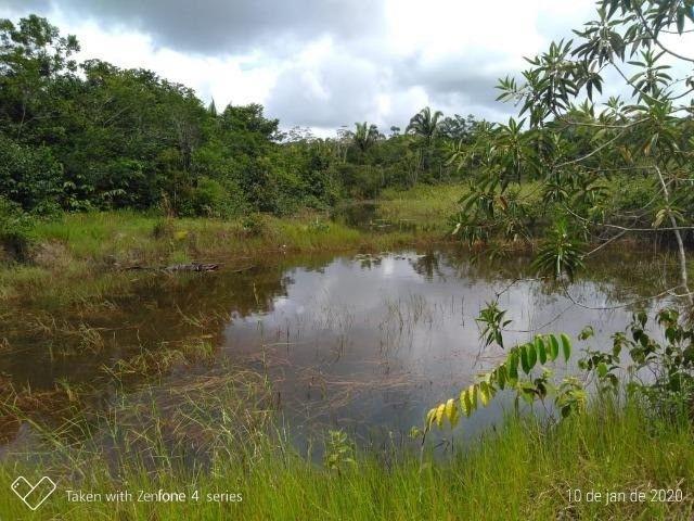 Fazenda no km 42, rumo Humaitá, com 100.00ha - Foto 7